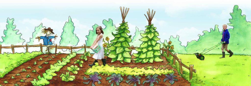 bottom of vegetable garden44